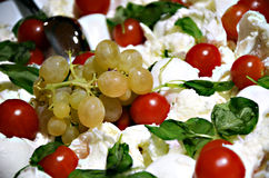 Antipasto. Dish during a reception stock image