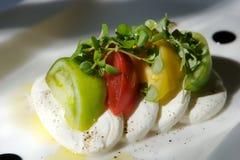 Antipasto gastronomico del formaggio e del pomodoro Fotografia Stock