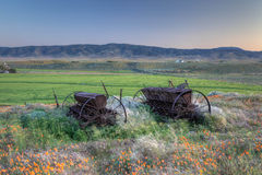 Antiquated Reapers. Antiquated and weathered farm reapers at rest on a hillside and surrounded by wild flowers in Antelope Valley, California Royalty Free Stock Images