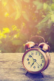 Antique Alarm Clock. Royalty Free Stock Photo