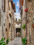 Antique alley in Bevagna, Umbria, Italy. Picturesque narrow alley with ancient building, arch, underpass, plants and flowers in Bevagna, Umbria, Italy Royalty Free Stock Photo