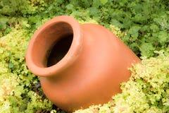 Antique Amphora in the garden Stock Photos