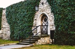 Antique arched wrought-iron doors in an old stone fortress wall using green lush ivy. Beautiful antique frnar over the old door