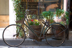Antique bicycle. Vintage bicycle displayed in front of shop window Stock Photography