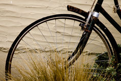 Antique Bicycle tire Stock Images