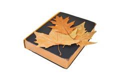 Antique book and autumn leaf Stock Photos