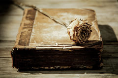 Antique book with a dried rose Royalty Free Stock Photo
