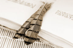 Antique book and feathers Royalty Free Stock Image