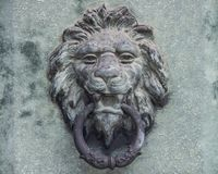 Antique brass door knocker in shape of a lion`s head. stock photography