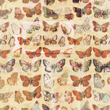 Antique butterflies grungy shabby chic pattern botanical background. In rustic colors vector illustration