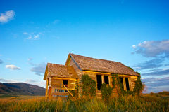 Antique Cabin on Idaho Farmland Stock Photo