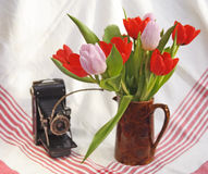 Antique Camera and tulips. Antique film camera with remote release and brown jug of fresh Spring tulips Royalty Free Stock Photos