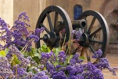 Antique cannon close up. Stock Photos