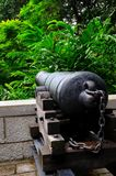 Antique cannon faces the forest Stock Photos