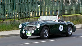 Austin-Healey 3000 MK I 1959 Royalty Free Stock Photos
