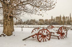 Antique Cart with Snow Sits Near a Beautiful Tree that hasn't quite lost its leaves. Stock Photos