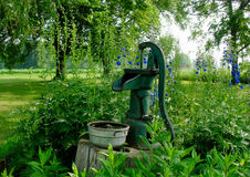 Antique Cast Iron Water Pump. Blooming hollyhocks frame this antique water pump set in the garden. The tin pail filled with water is for the birds that frequent royalty free stock photos