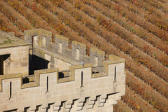 Antique castle battlement and vineyard in Olite, Navarra. Spain Royalty Free Stock Images