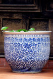 Antique Ceramic Flowerpot. Royalty Free Stock Photos