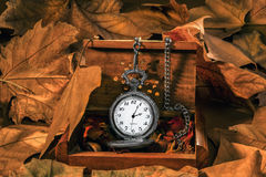 Antique clock with autumn leaves. In wooden box Stock Photography