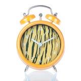 Antique clock tiger coloring. Royalty Free Stock Photos
