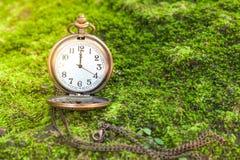 Antique clock vintage. On green grass Stock Photos