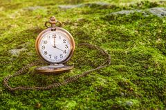 Antique clock vintage on green grass. Selective focus Stock Images