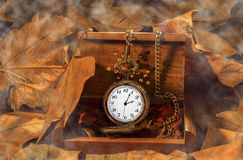 Antique clock in wooden box with smoke. And leaves Royalty Free Stock Images