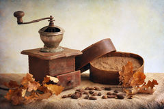 Antique coffee grinder. With acorns coffee Stock Photography
