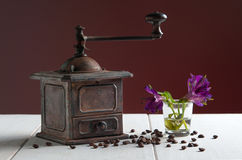 Antique coffee grinder on white wooden surface Stock Images