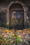 Antique door in the forest stock images