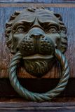 Antique door knocker with lion head. And ring, Venice royalty free stock images