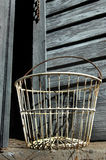 Antique Egg Basket Stock Photos