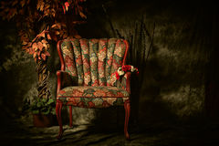 Antique Empty Chair with Colorful Pattern and Plant. Stock Image