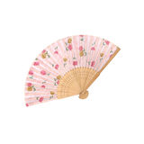 Antique Fan Japanese Folding on white background Royalty Free Stock Images