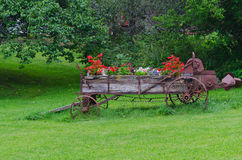 Antique Farm Equipment Spreader with Flowers Royalty Free Stock Photos