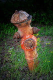Antique Fire Hydrant  Stock Photography