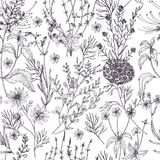 Antique floral seamless pattern with wild flowers, flowering herbs and herbaceous plants hand drawn in black and white Stock Images