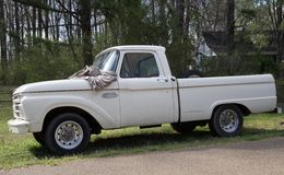 Antique Ford 100 Pick-up truck. Stock Image