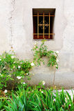 Antique french stone house window & white roses Royalty Free Stock Photos