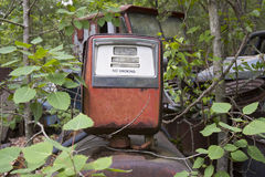 Antique gas pump in woods Royalty Free Stock Images