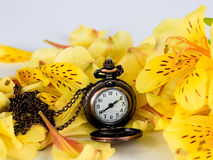 Antique gold pocket watch of the nineteenth century with yellow alstroemeria stock image