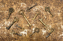 Antique golden keys over vintage animal leather background Stock Photos