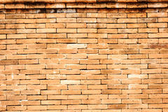 Antique grunge red brick wall Stock Photography
