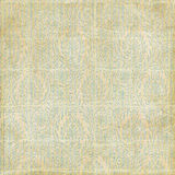 Antique grungy paisley damask background Royalty Free Stock Photography