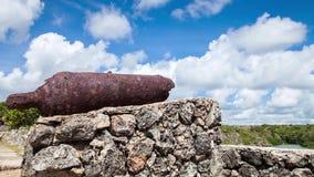 Antique gun in the castle timelapse stock video