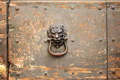 Antique handle with lion head Stock Photos