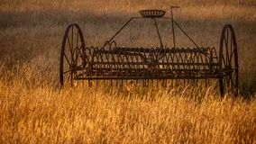 Antique hay rake in a farmers field at sunset. stock images