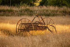 An antique hay rake in a golden field at sunset. royalty free stock photos