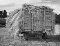 Antique Hay Wagon. Black and white aged photo Stock Photos